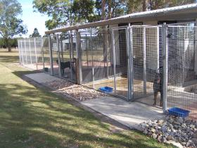 kennels1 (1)